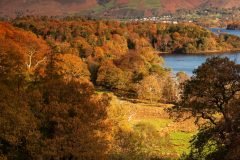 Skiddaw Cat Bells /Lake District Landscape Photography