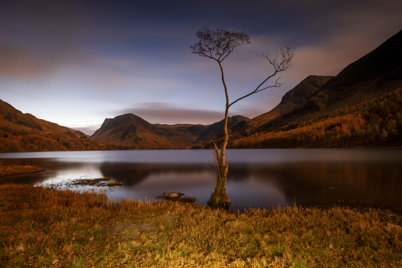 Buttermere the lone tree/Lake District Landscape Photography