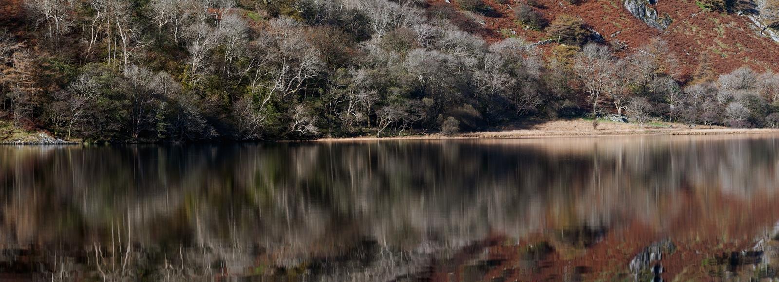 Buy canvas prints of llyn gwynant snowdonia north wales for Buy canvas prints online