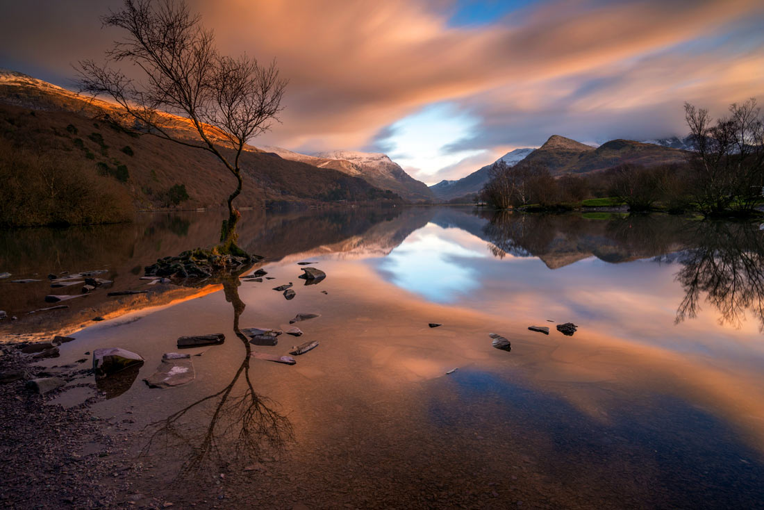 Wales Landscape Photography/ Lone Tree Llyn Padarn, Llanberis North Wales