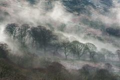 Wales Landscape Photography / Llyn Gwynant Snowdonia Wales